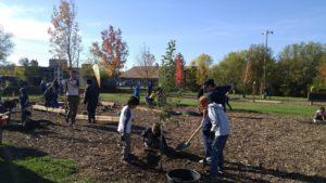 Hillcrest Tree Planting
